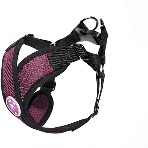 Small Dog Gooby Harness In Purple - New Never Worn