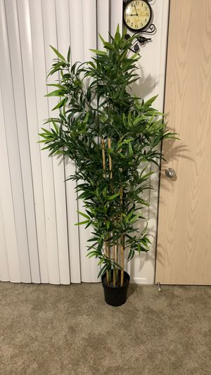 Artificial tall bamboo plant for Sale in West Jordan, UT