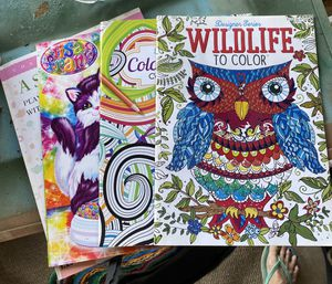 Coloring books. for Sale in Tempe, AZ