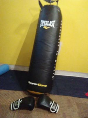 100lb Everlast punching bag for sale! for Sale in Clinton Township, MI