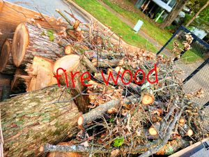 Fire Wood for Sale in Adelphi, MD
