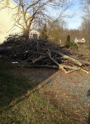 Free wood for Sale in Glen Burnie, MD