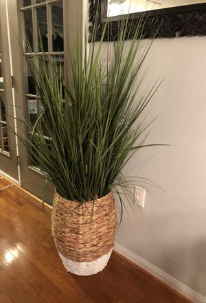 Artificial House Plant for Sale in Harpers Ferry, WV