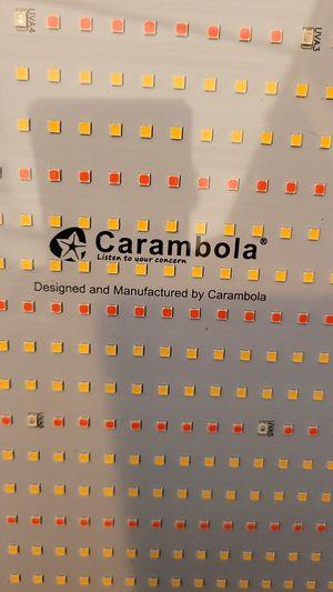 Carambola 3000 watt led grow light full specttum for Sale in La Mirada, CA