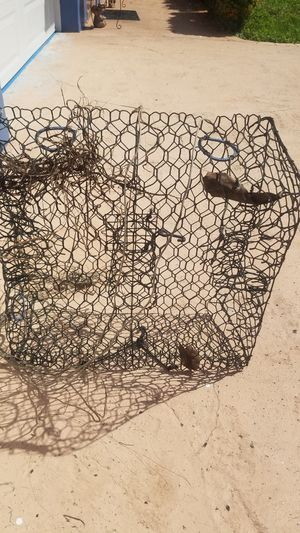 Free ***crab trap*** for Sale in Fort Lauderdale, FL