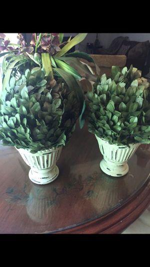 Artificial plants for Sale in Acworth, GA