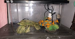 Fish/turtle Plastic Tank for Sale in Fontana, CA