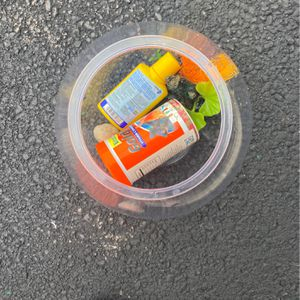 Goldfish Bowl With All The Supplies for Sale in Oswego, IL