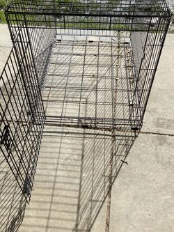 Large Dog Crate for Sale in Campbell,  CA
