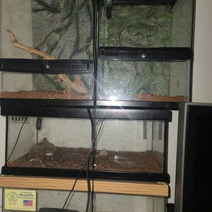 Reptile And Snake Domes for Sale in Fresno, CA