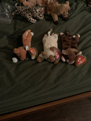 Original beanie babies pounce, snip and chip for Sale in Newport News, VA