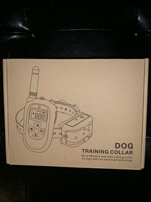Dog Training Collar for Sale in Newport, KY