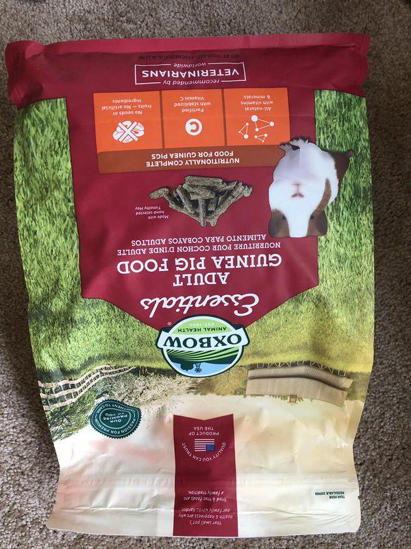 Guinea Pig hay/food