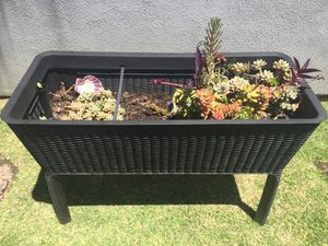 Garden box for Sale in Westminster, CA