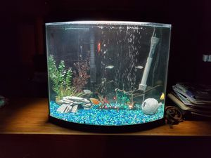 Fish Tanks for Sale in Victorville, CA