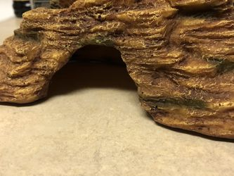 Reptile Hide for Sale in Round Rock,  TX