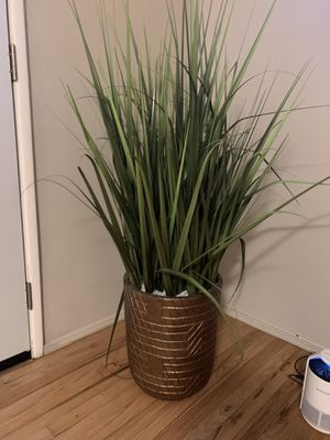 Fake Plant with vase and rocks for Sale in Rosemead, CA