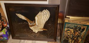 Owl pic for Sale in Florence, KY