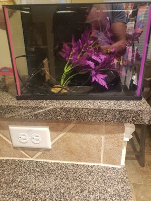 Ten Gallon Top Fin Aquarium with Pump and Plant! for Sale in Houston, TX