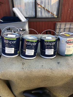 Painting/ paint $20 for Sale in Tacoma, WA