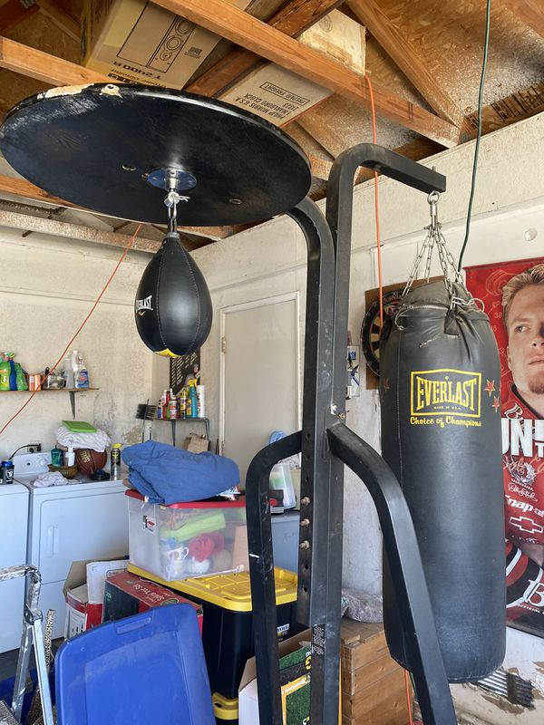 Everlast Punching Bag with Stand and Speed bag