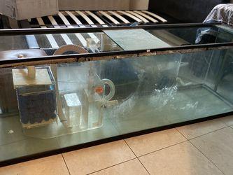 130 Gallon Fish Tank With Filter for Sale in Miami Gardens,  FL