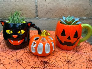 Halloween Planters with living plants for Sale in Montclair, CA