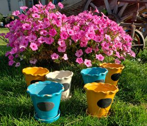 6 WINDOW POTS for Sale in Lakeside, AZ