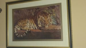 Framed Tiger print for Sale in Middle Valley, TN