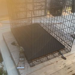 Cage For Dog for Sale in Lehigh Acres,  FL