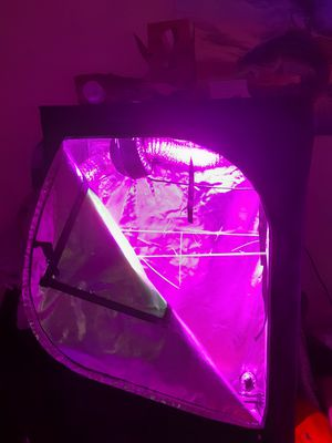 4x3 Complete Grow Tent. Light, fan, filter, thermostat for Sale in Redwood City, CA