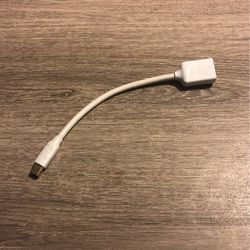 Mini DisplayPort To DisplayPort for Sale in DeKalb,  IL