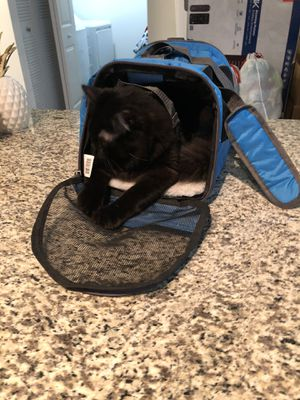 Cat Carrier (Blue) for Sale in Royal Palm Beach, FL