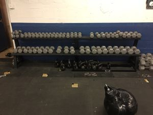 Dumbells for Sale in Staten Island, NY