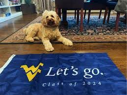 WVU Class of 2024 Let's Go Flag for Sale in Wheeling, WV