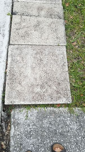 2 feet x 2 feet cement pavers for Sale in Temple Terrace, FL