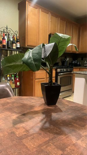 House plant office desk Home Decor for Sale in Moreno Valley, CA
