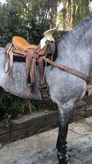 Horse saddle, Montura cola de pato for Sale in Jurupa Valley, CA