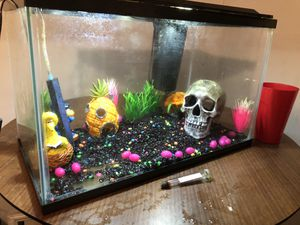 Fish Tank 10 gallon for Sale in Perrysburg, OH