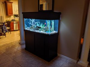 75 gallon fish tank with stand and pump for Sale in Tampa, FL