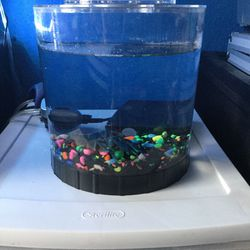Plastic Fish Tank for Sale in Anaheim,  CA