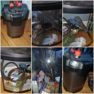 39 gallon fish tank with external filter for Sale in East Hartford, CT