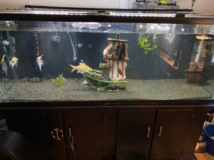 100 gal glass fish tank and stand for Sale in Long Beach, CA