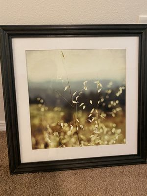 Pottery Barn photography wall art 18x18 for Sale in Redmond, WA