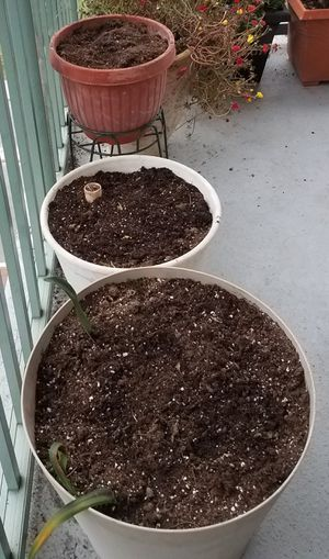 Plastic pots with very rich soil for Sale in Rockville, MD