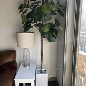 Fake Fig Plant for Sale in Hillsboro, OR