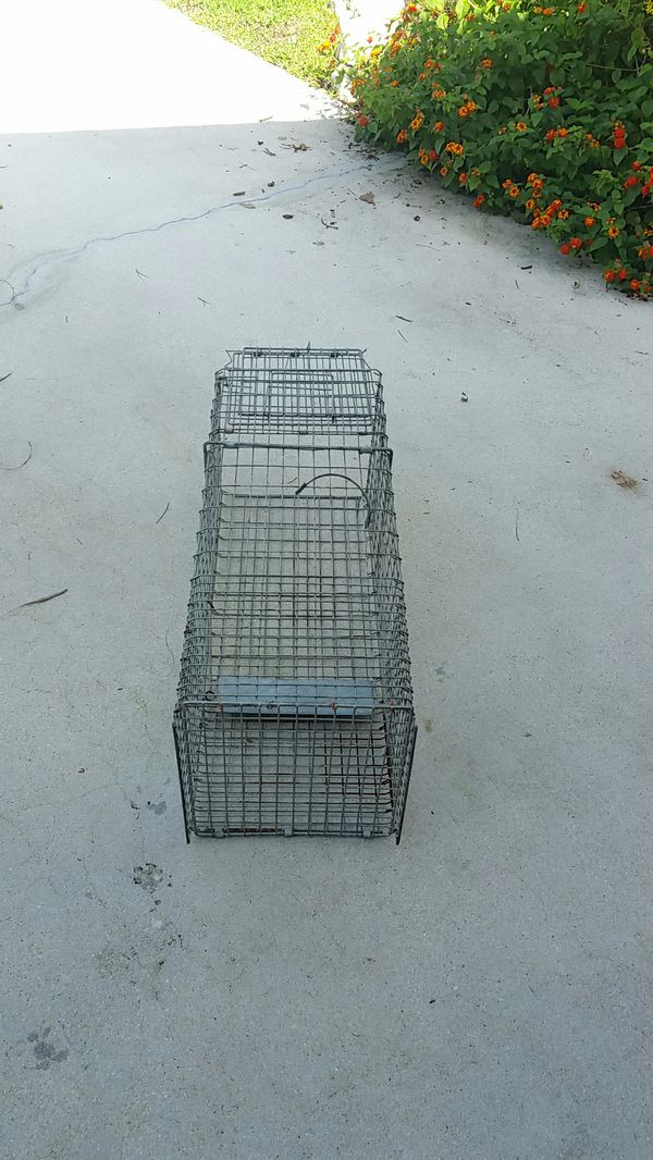 Animal trap galvanized