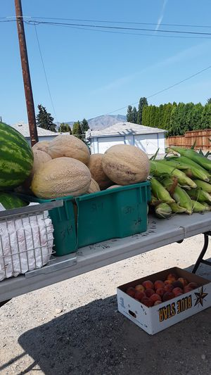 Produce for Sale in East Wenatchee, WA