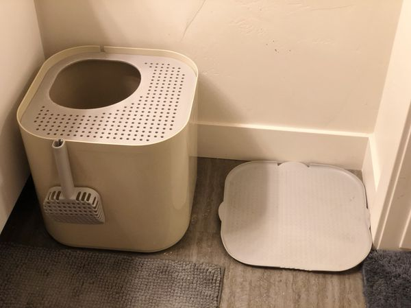 Modkat Top-Entry Litter Box + Litter May (Katch)