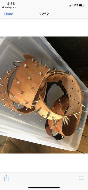 Dog collars for Sale in Hesperia, CA